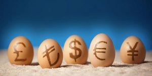 VİOP Piyasasında İşlem Yaparken Hangi Para Birimi Kullanılır